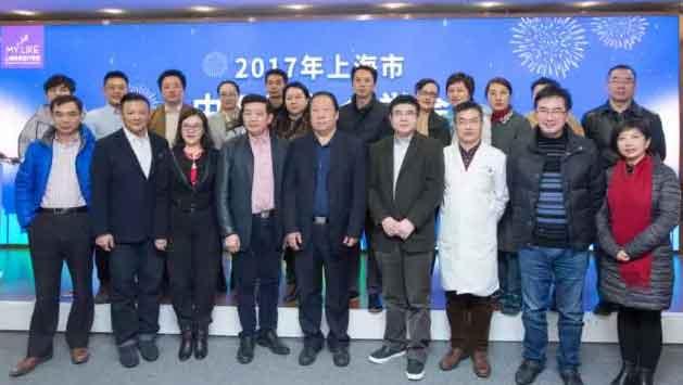 2017上海市中西医结合学会,微整之巅峰