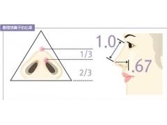 上海美莱鼻小柱怎么进行延长