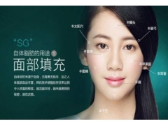 上海做全脸脂肪填充需要多少钱