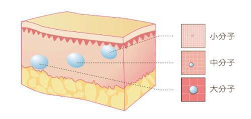 美莱揭秘大分子、小分子玻尿酸都有哪些差别