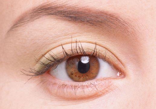 三点定位双眼皮价格多少
