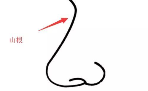 上海美莱鼻部整形的方法有哪些
