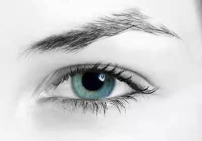 上海美莱杜园园教你如何实现美丽双眸!