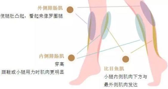 上海瘦腿针美莱效果怎么样