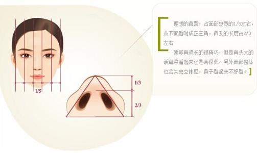 鼻翼整形术需要多少钱