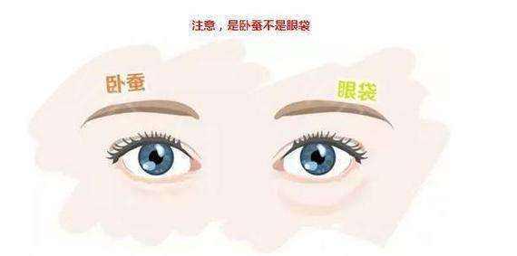 在上海做眼袋吸脂手术要多少钱