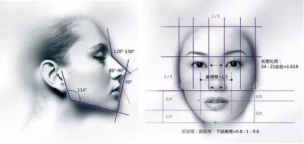 美莱做鼻子的标准是什么