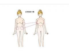 上海做自体脂肪丰胸的优势主要有哪些