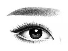 做美眉对眉部皮肤的损伤