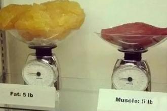 吸脂会减重吗
