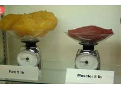 什么是吸脂减肥,吸脂减