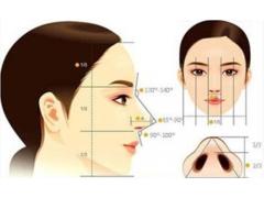 自体软骨隆鼻常用的材料
