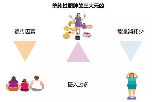 减肥瘦身什么方法好,当然是上海美莱埋线减肥了