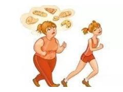 肚子上的脂肪太厚了怎么才能减掉啊