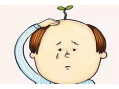 植发的过程是怎么样的