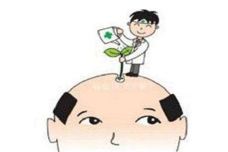 植发术后存活率怎么样,植发效果好吗
