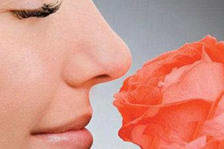 做个隆鼻手术的话一般要花多少钱