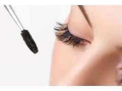 种植眼睫毛能保持多久,